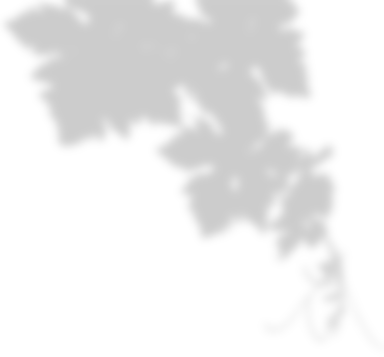 Ferrari Carano Vineyard